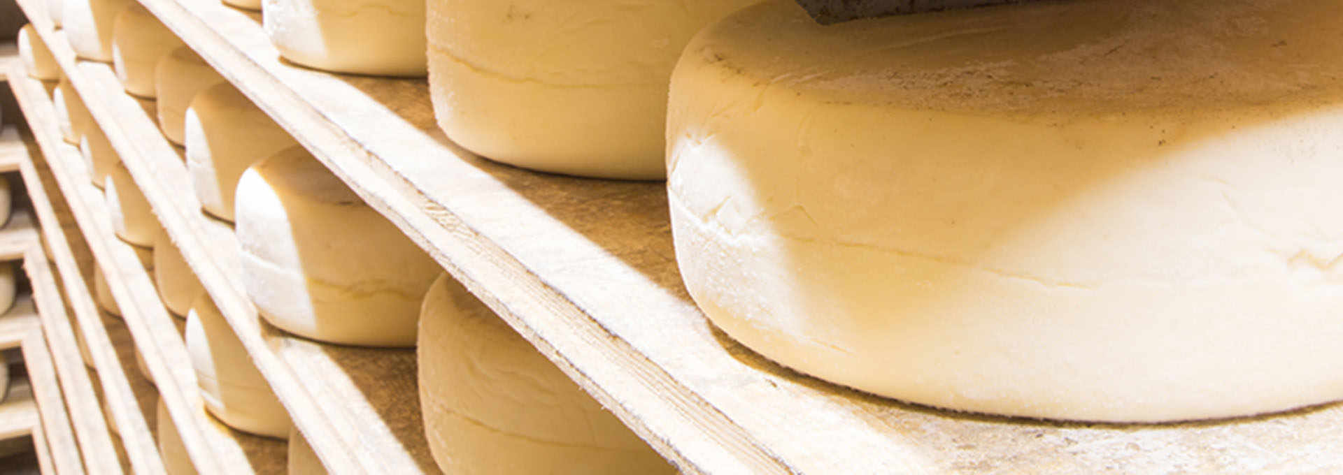 The Butter and Cheese of the Alta Langa