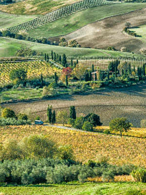 Val di Chiana. Art, Nature and Fine Eating